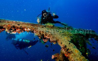 Diver 2996