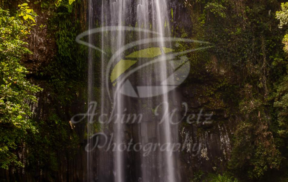 Millaa Millaa Waterfall 1244