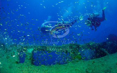 Divers 6244
