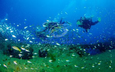 Divers 6245