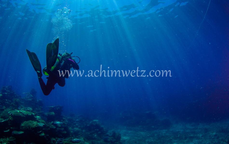 Diver 6413
