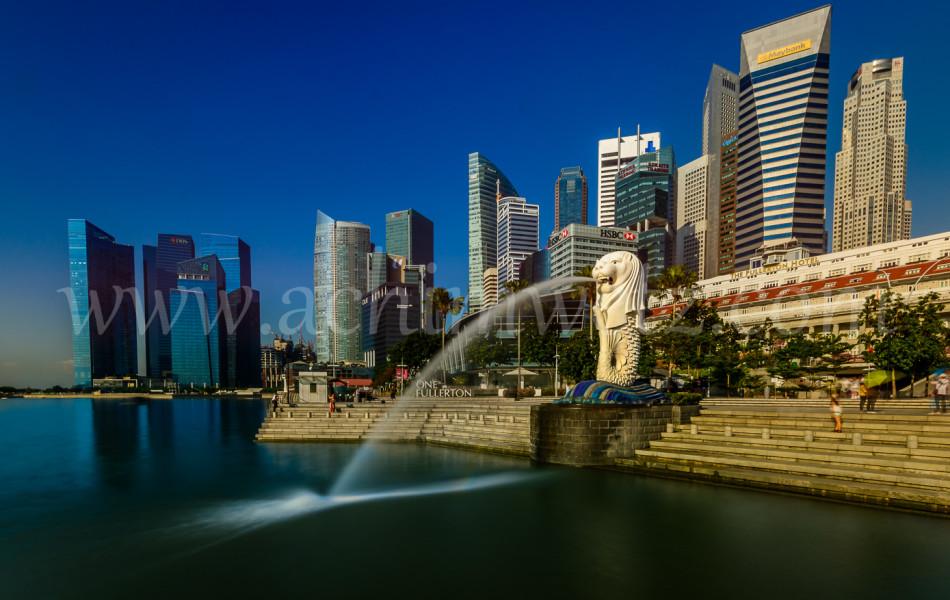 Singapore-The Lionfish 0198