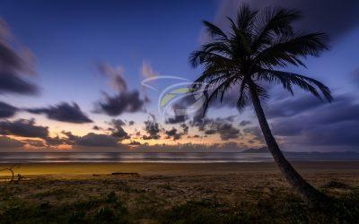 Sunrise 7930