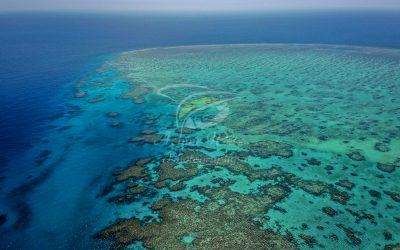 Lodestone Reef