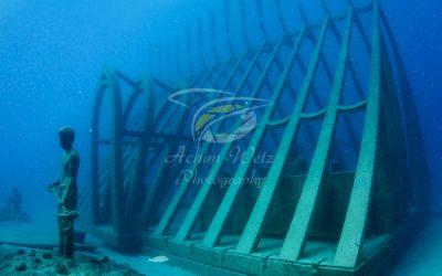 Moua Coral Greenhouse 2665