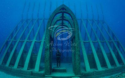Moua Coral Greenhouse 2696