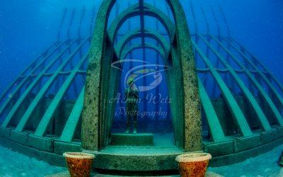 Moua Coral Greenhouse 2697