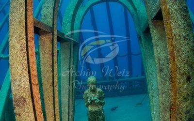 Moua Coral Greenhouse 2701