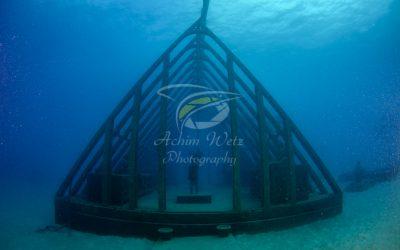 Moua Coral Greenhouse 2712